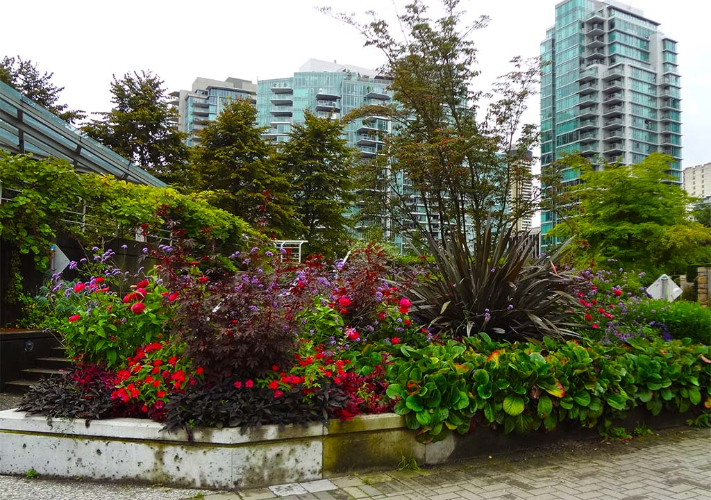 Lord Stanley and Coal Harbour Parkway